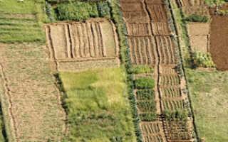Отражение в бухгалтерском учете земельного участка