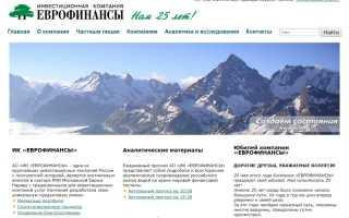 Еврофинансы инвестиционная компания