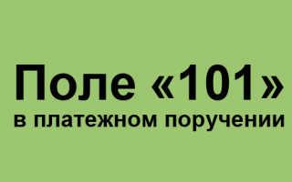 Поле 101 в платежном