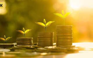 Особенности формирования уставного капитала