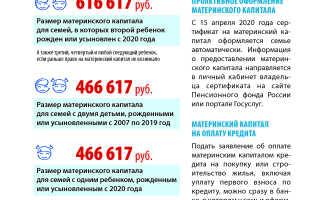 Сумма материнского капитала в россии
