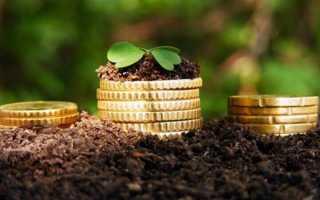 Инвестирование в сельское хозяйство россии