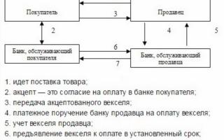 Расчет простым векселем проводки