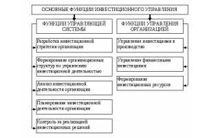 Комитет по управлению инвестициями